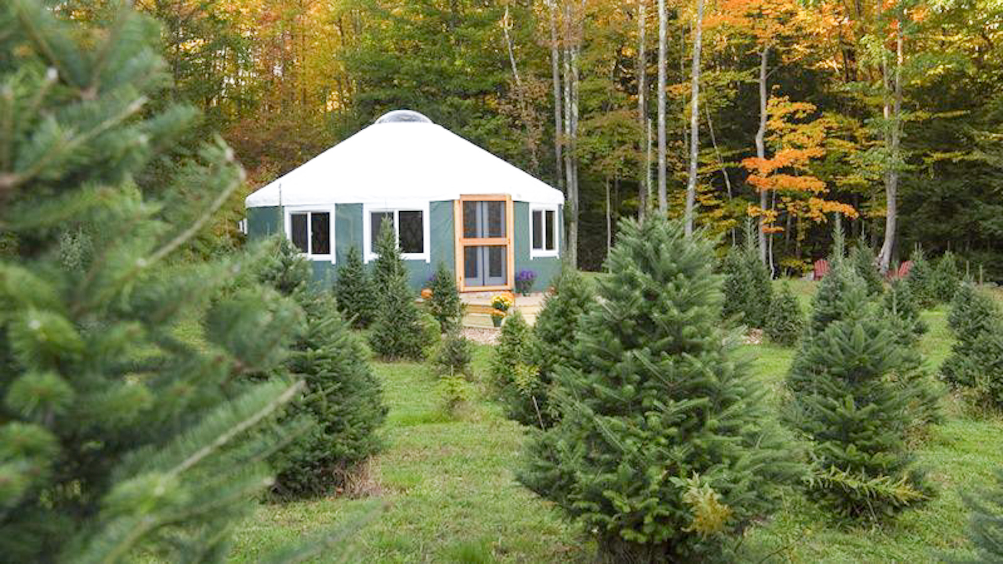 Tuckaway Tree Farm Yurt